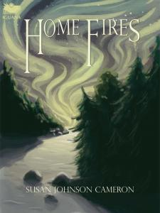 Home Fires ebook cover