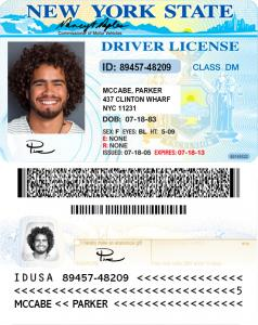 Fake NY Drivers License